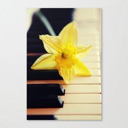 piano flower Canvas Print