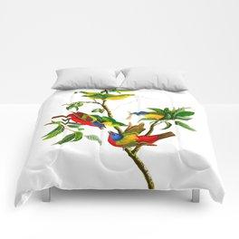 Painted Finch Bird Comforters