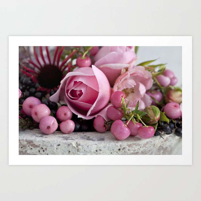 soft pink rose and berry still life Art Print