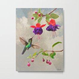 Fuchsia and Hummingbird Metal Print