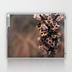 Dry live Laptop & iPad Skin