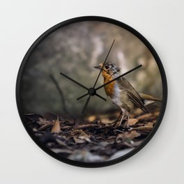 A careful look Wall Clock