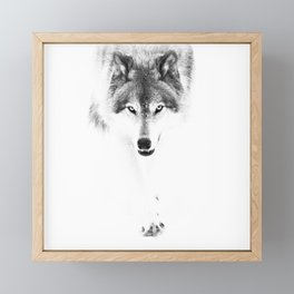 Wolf Framed Mini Art Print