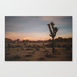 a joshua true sunset Canvas Print