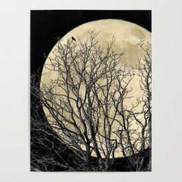 Tree with Crow Against Full Moon A181 Poster