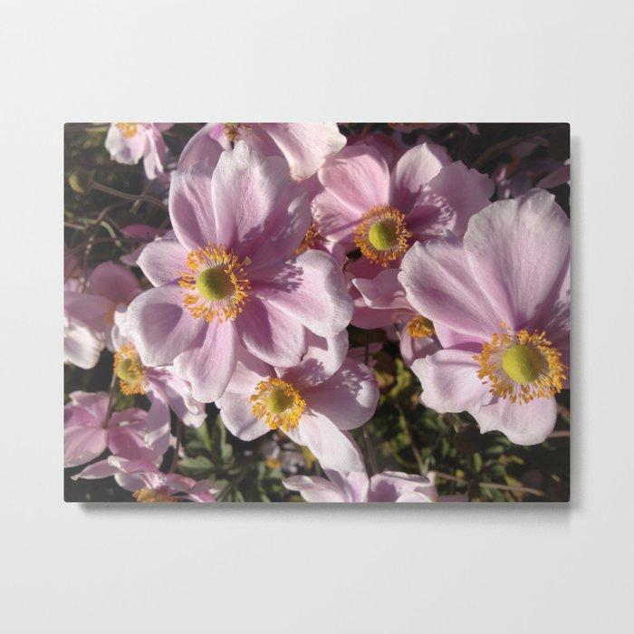 Pink flower party Metal Print