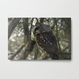 Pepsican Owl Metal Print
