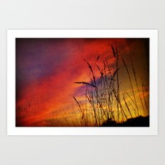 Dreaming in Color (of the Setting Sun) Art Print
