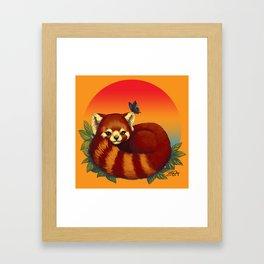 Red Panda Has Blue Butterfly Friend Framed Art Print