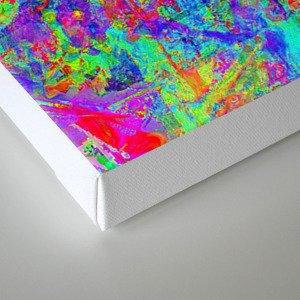 20180506 Canvas Print