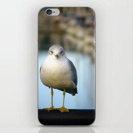 Marina Seagull iPhone Skin