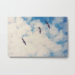 Flying Over Seas Metal Print