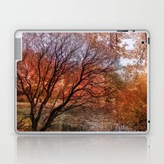 Mad colors of Autumn Laptop & iPad Skin
