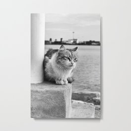 thoughtful Sad Cat Metal Print