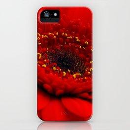 Red Gerbera iPhone Case