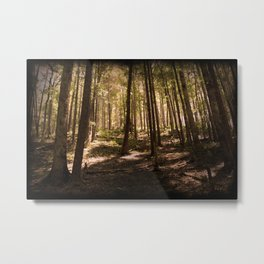 Smoky Mountain Forest Metal Print