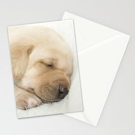 Sleeping labrador puppy Stationery Cards