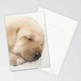 Sleeping labrador puppy Stationery Cards