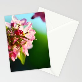 Pink Flowers Blue sky Stationery Cards