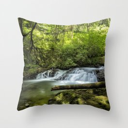 North Fork Silver Creek, No. 2 Throw Pillow