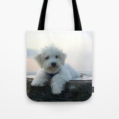 Teddy At Sunset Tote Bag
