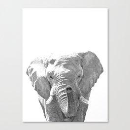 Black and white elephant illustration Canvas Print
