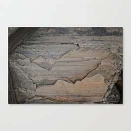 Layers and layers Canvas Print