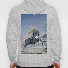 Wonderful wild fantasy horse Hoody