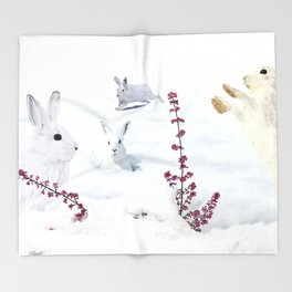 White rabbits dancing around red erica in snow mountain. Throw Blanket