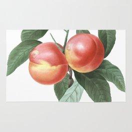 HIGHEST QUALITY botanical poster of Peach Rug