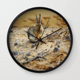 Rabbit at the Petroglyph National Monument - 001 Wall Clock