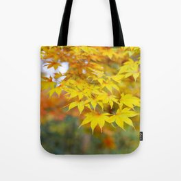 Japanese maple in yellow and orange Tote Bag