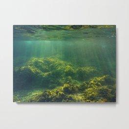 Underwater 2.0 IV. Metal Print