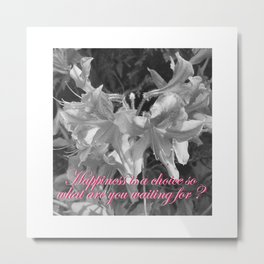 Happiness... isn't it all this is about? Metal Print