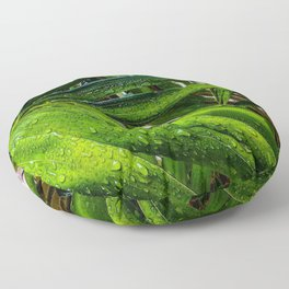 Fresh Greens with Raindrops Floor Pillow