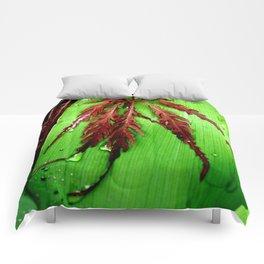 Peaceful Nature Comforters