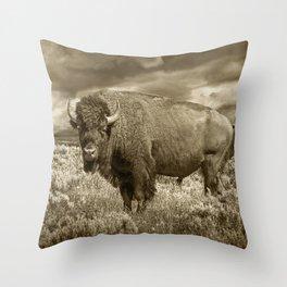 American Buffalo in Sepia Tone Throw Pillow