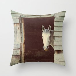 Peekaboo Mare // Horse Throw Pillow