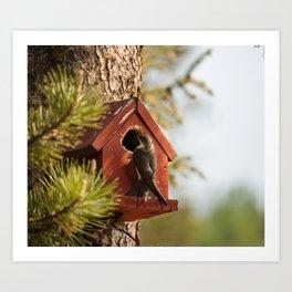 Brown Swallow Photography Print Art Print