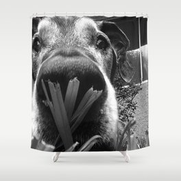 JANGO Shower Curtain