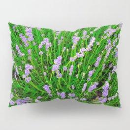Lavender Close Up Pillow Sham