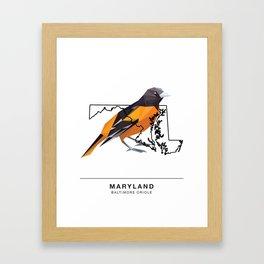 Maryland – Baltimore Oriole Framed Art Print