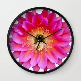 Arid Bloom Wall Clock