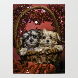 Mixed Breed Puppies Together in a Basket Looking up in Front of a Glitter Heart Poster