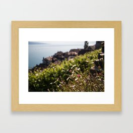 Lavaux Wildflowers Framed Art Print