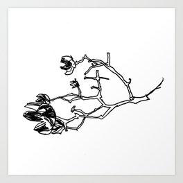 Crepe Myrtle II Art Print