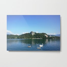 Swans in Bled Metal Print