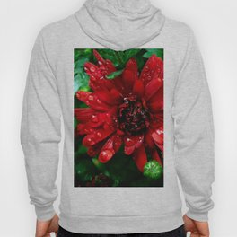 red n green Hoody