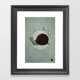 Escargö Framed Art Print