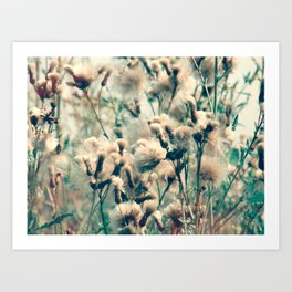 Swedish Spring Bloom Art Print